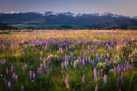 Rocky Mountain range.